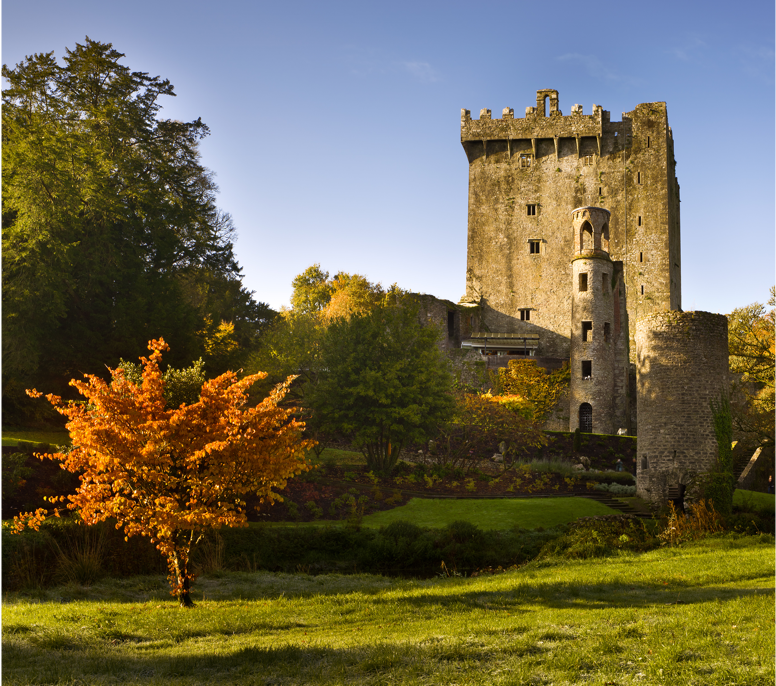 Old castle in Cork, Ireland surround by trees and grass