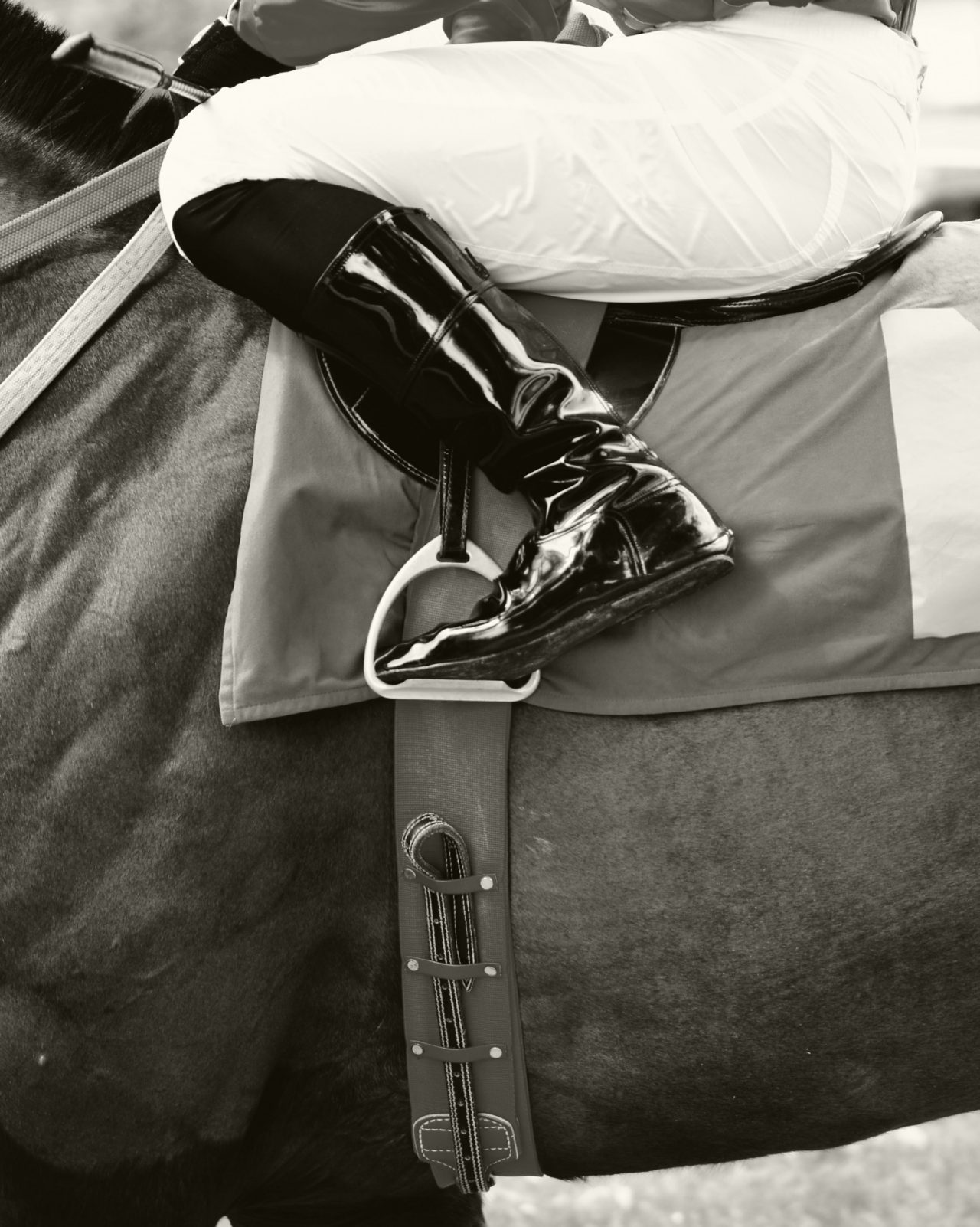 Black and white closeup of jockey on race horse