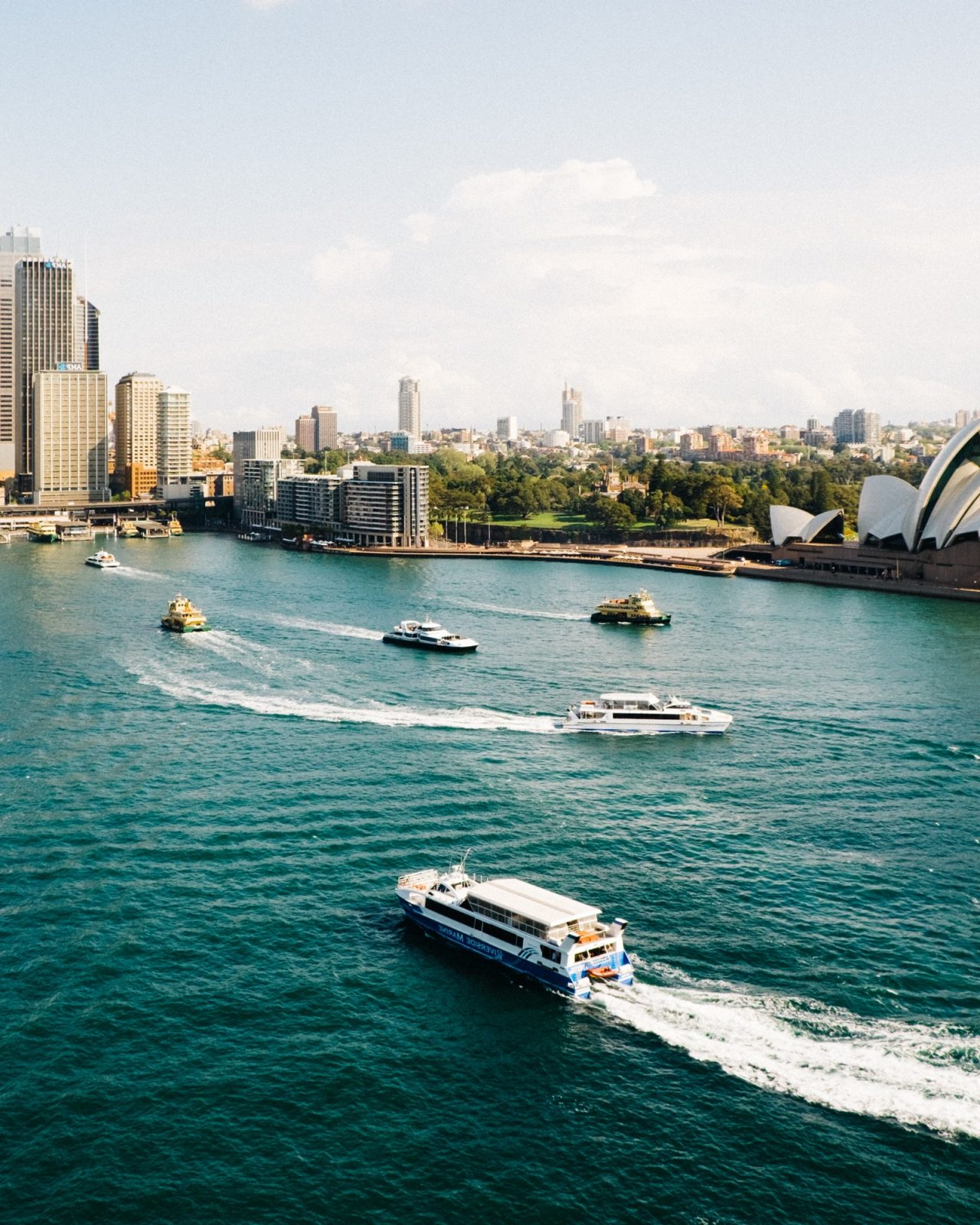 Multiple boats zooming in Sydney Harbour in daylight